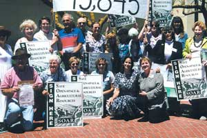 Renewal-Efforts-Need-Petition-Gatherers