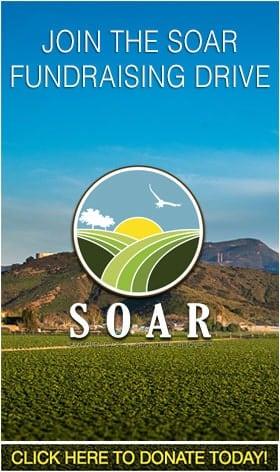 SOAR-Donate-home